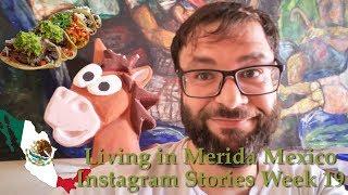 Living in Merida Mexico - Week of June 7th, 2019 - Instagram Stories Week 19