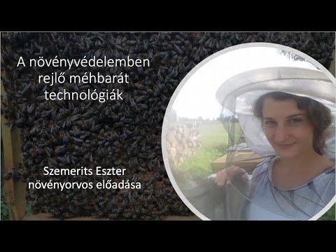 Hány pinworms él a külső környezetben