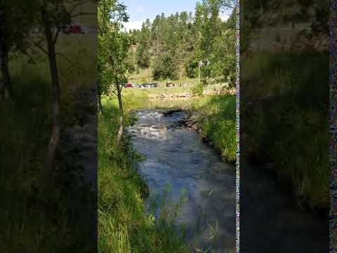 Video Of Custer State Park, SD