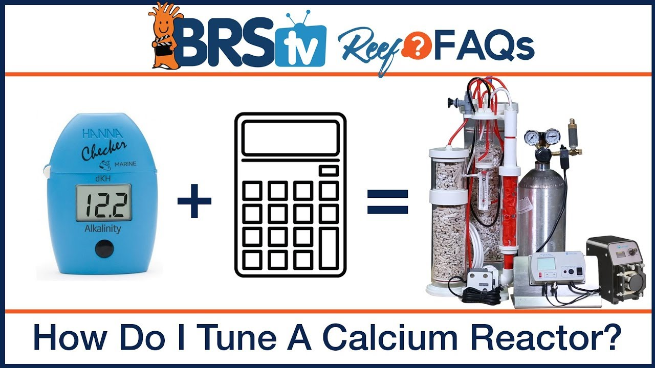 Calcium reactor tuning with a reef tank calculator | ReefFAQs