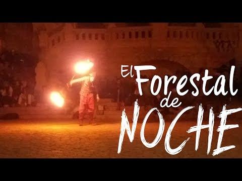 🔥🔥🔥 UNA NOCHE DE MALABARES /CHILE