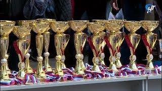 Жители Новгородской области приняли участие в «Кроссе Нации»