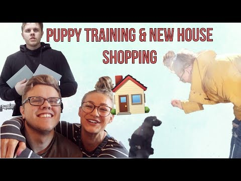 Training Our New Puppy, New House Shopping & A VERY PROUD MOMENT!!