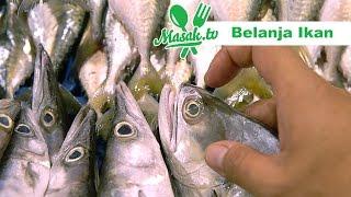 Belanja Ikan