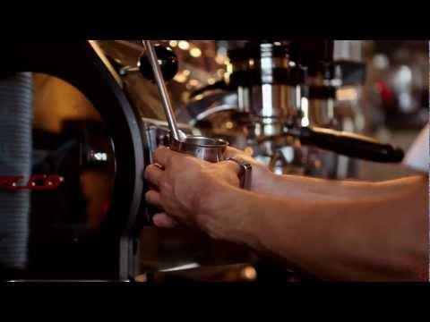 Buddy Brew Coffee - Roastery & Coffee Bar
