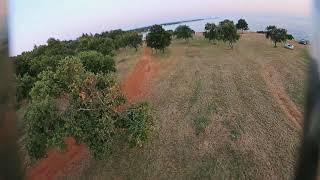 Tree Hugging FPV - Armattan Marmotte DJI DVR