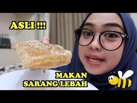Makan sarang lebah asli  part 1