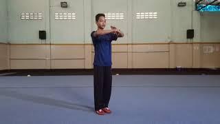 Pembelajaran Teknik Dasar Wushu
