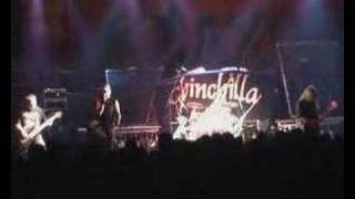 Chinchilla Our Destiny Saxon Tour Lichtenfels