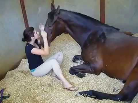 2016 Video by Girl and Horse