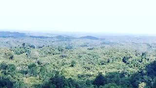 preview picture of video 'Punsak ajung dora pegunungan kasali barito timur kalimantan tengah'