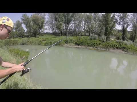 La lista di cose che sono necessarie per pesca