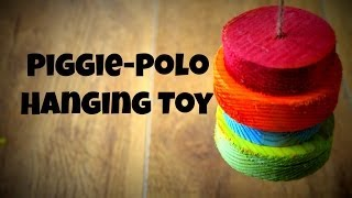 Piggie-Polo *Homemade Guinea Pig Toy*