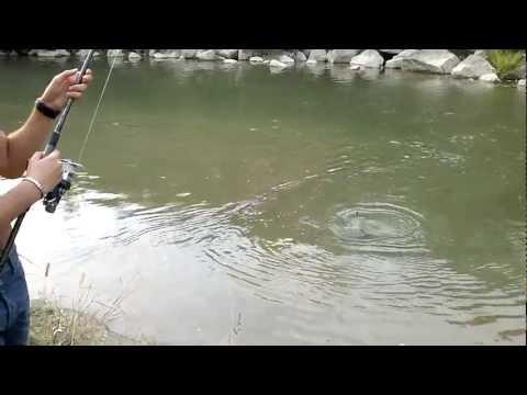 Il gumboots per pescare su aliexpress