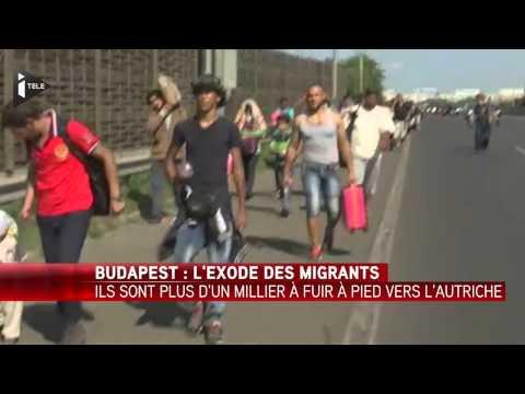 Hongrie : Plus d'un millier de clandestins marchent sur l'autoroute vers l'Autriche