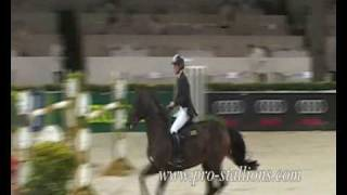 video of Stakkato