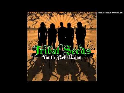 Youth Rebellion - Tribal Seeds