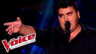 Jacques Brel - Ces gens là | Yoann Launay | The Voice France 2015 | Blind Audition