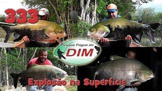Programa Fishingtur na TV 333 - Pesque Pague do DIM