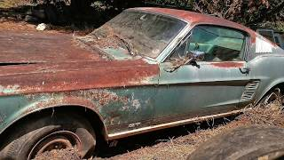 1967 Mustang 390 GT Fastback Barn Find, Parked Since 1973, Price Revealed