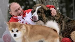 """Ulubiona piosenka Putina """"Tak bardzo tęskniłam …"""""""