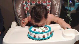 """""""Babies Diving Into Birthday Cakes Compilation"""" 