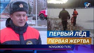 В Окуловском районе утонул пожилой мужчина