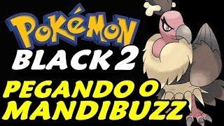 Mandibuzz  - (Pokémon) - Pokémon Black 2 (Detonado - Parte 9) - Mandibuzz, Dig e O Deserto