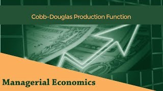 Cobb-Douglas Production Function | Leontief Production Function