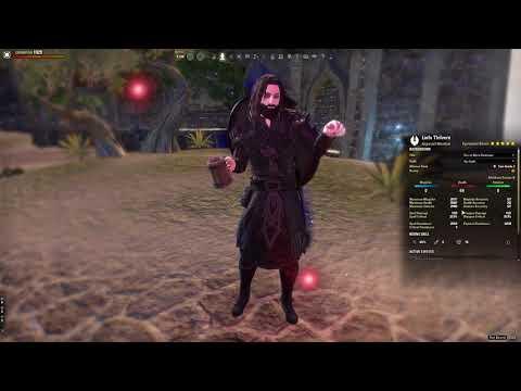 End-Game PvE Warden Main Tank Build by Liofa (Summerset) — Elder