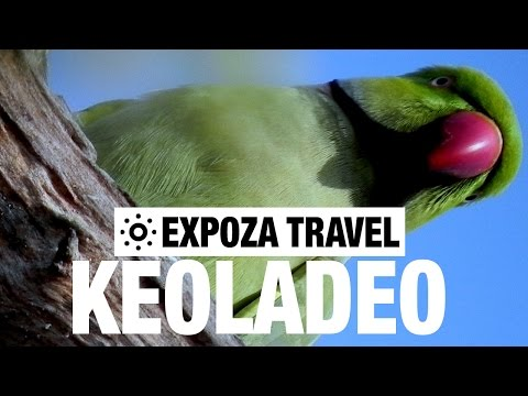 Keoladeo Travel Video Guide