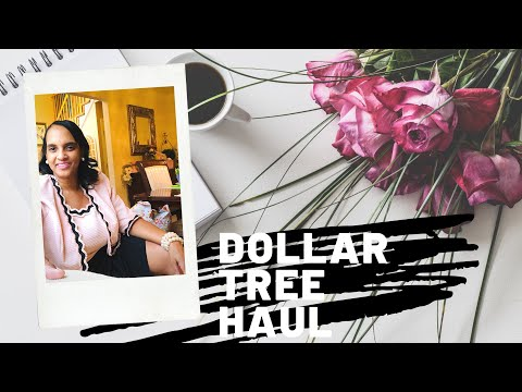 Dollar Tree Haul ~ Hauling from the Car ❤️ by The Frugalnista