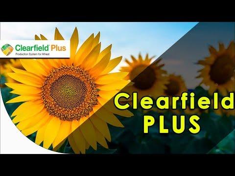 Что такое система Clearfield Plus? Для чего она нужна?