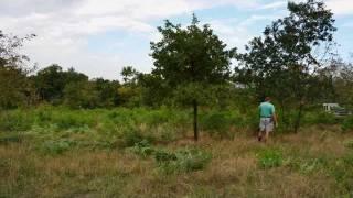 preview picture of video 'Naturschutzbund Pflegeeinsatz Fehhaube'