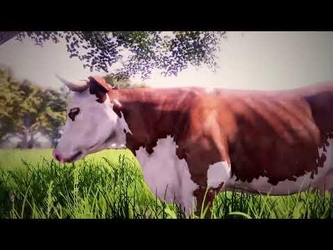 Видео № 0 из игры Real Farm [Xbox One]