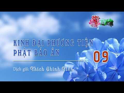 Kinh Đại Phương Tiện Phật Báo Ân -9 (Hết)