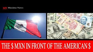 🔴 DEVELOPING.  PRICE OF THE DOLLAR IN MEXICO. GROWING ECONOMY | MN MaximoNews