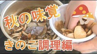 採ってきたキノコ【調理編】