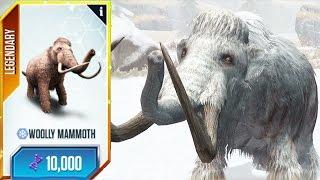 Wooly Mammoth Videos Bapse Com