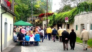 preview picture of video 'Wien, Stammersdorfer Kellergasse: Heurigen Fest (Okt. 2014)'