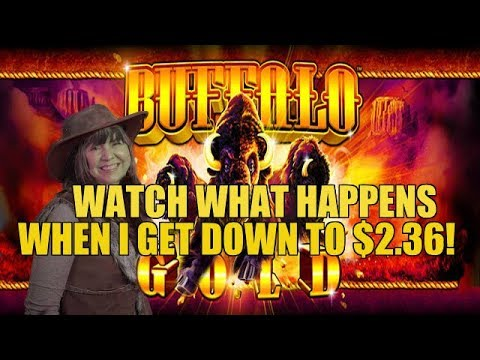 DOWN TO THE LAST BET! HUGE WIN-BUFFALO GOLD SLOT MACHINE