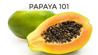 Papaya 101   Everything You Need To Know