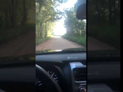In Georgia the dirt roads are in the travel map