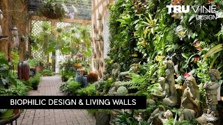 Florida Landscape Design #84 | Living Walls by TruVine Design | Delray Beach, Florida