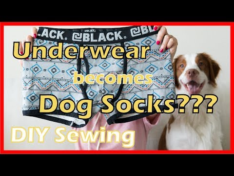 Underwear Thrift | Doggie Socks | DIY Sewing Project | How To Makei Dog Clothes