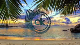 El Alfa Ft Cardi B   Mi Mami ( Criptosk Remix ) [Electro House]