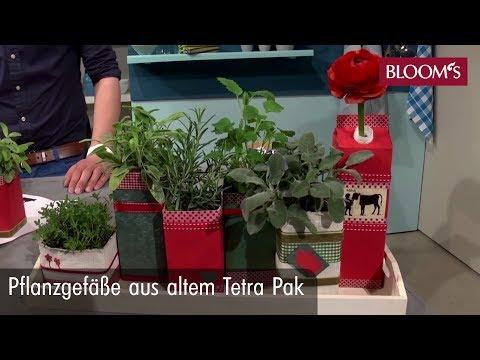 Für Ihren Indoor-Kräutergarten: Dekorative Pflanzgefäße Aus Altem ...