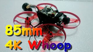 Original 85mm4K FPV Whoop Test Flight