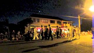 preview picture of video 'Waimea Light Parade'