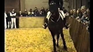 video of Julio Mariner xx